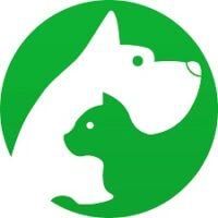 קידום אתרים וחנויות באינטרנט- איך לקדם לחנות חיות